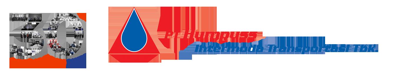 Logo Hits